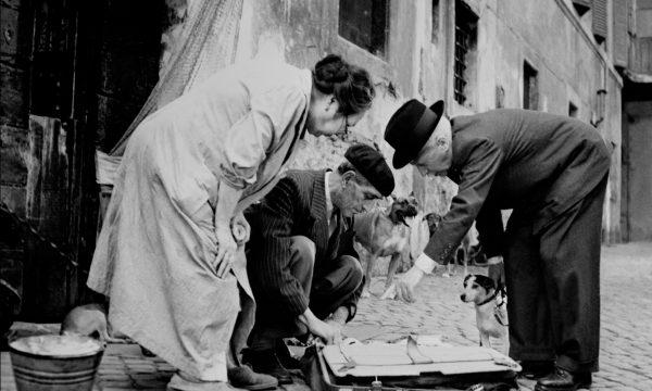 Image du film Umberto D
