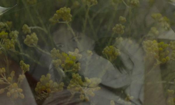 Image du film L'Âcre parfum des immortelles