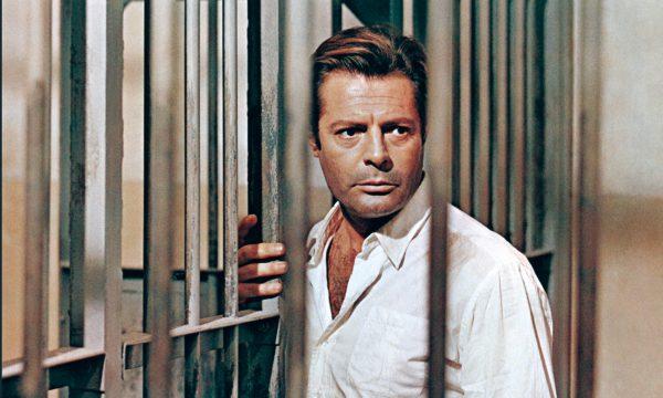 Image du film L'Étranger