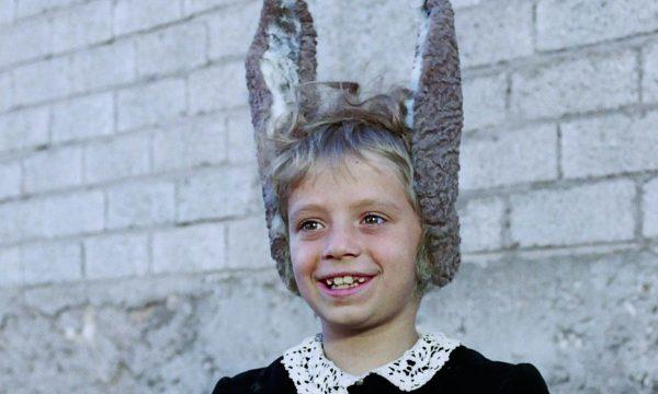 Image du film Les aventures de Pinocchio